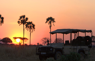 Kwihala Game Drive Sunset1